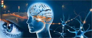 Using Mind Power to Achieve New Year Resolutions